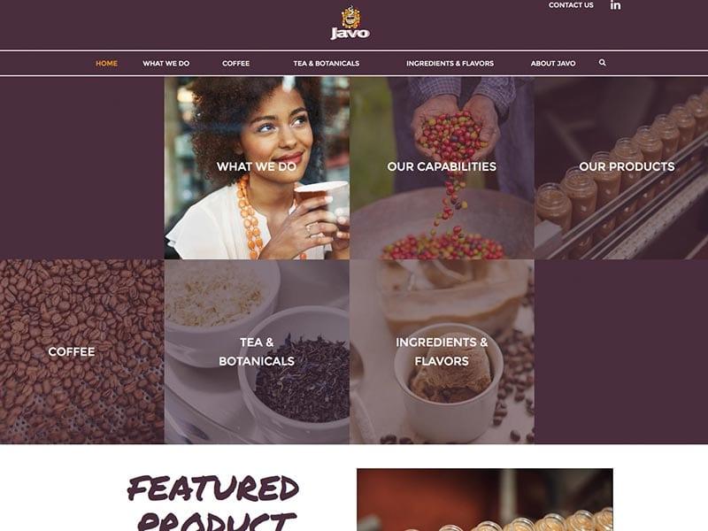 javo-website-2