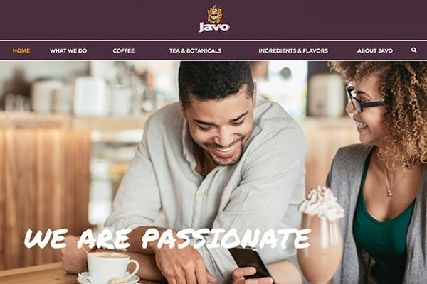Javo | Website Design, Content Development & SEO