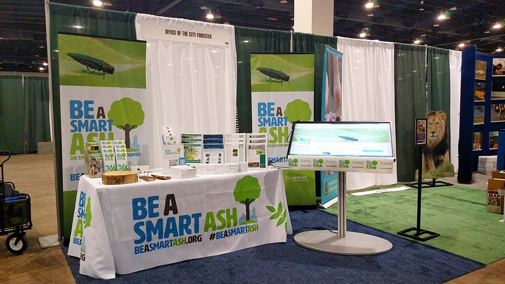 Be-smart-ash-display-center-table