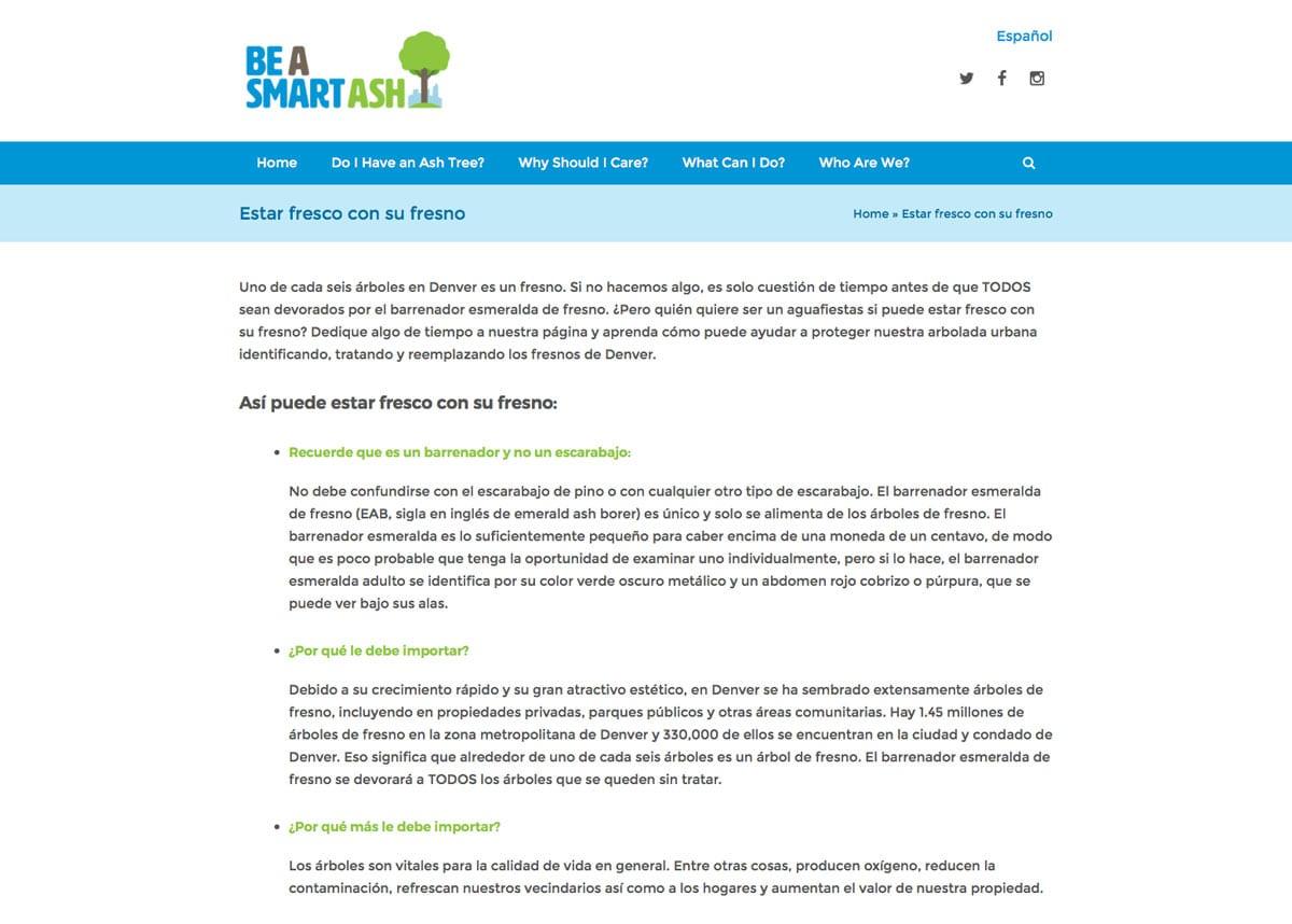 Denver-parks-smart-ash-website-design-3