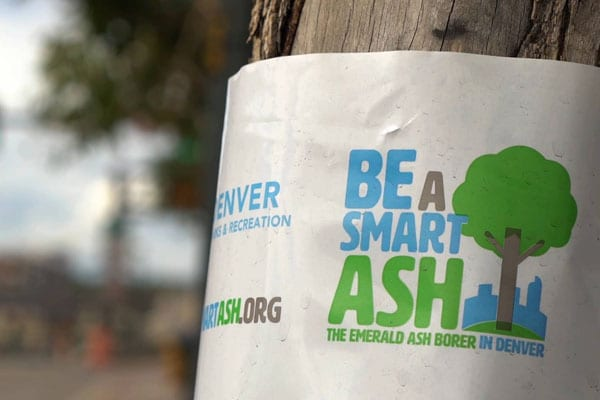 Denver Parks & Recreation | Be A Smart Ash Integrated Campaign